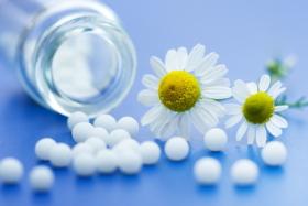 Ромашка в гомеопатии